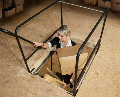 safety railing ladder
